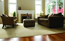 carpet cleaning and protection