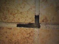 Hollow tiles or cracking tiles and grout? Read this before ripping it all out.