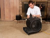 How To Speed Up Carpet Drying